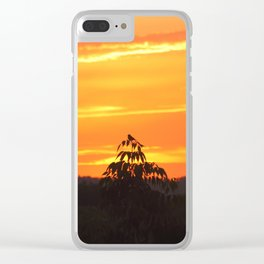 Red Sky Sunset with Red Robin Clear iPhone Case