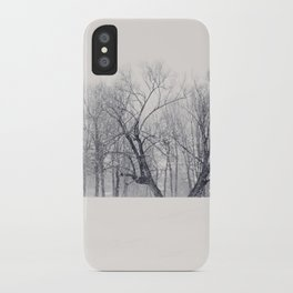 Into the Blizzard iPhone Case