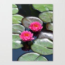 LG Series: 22 Canvas Print