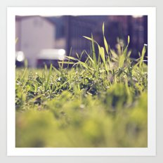 Grassy Things Art Print