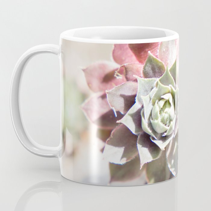 Succulents in the Sunlight Coffee Mug