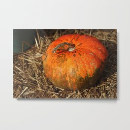 Pumpkin Says Pick Me Metal Print