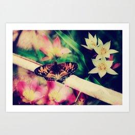 Butterfly :: Summer Beauty Art Print