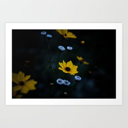 Yellow Flower in a Blue World Art Print