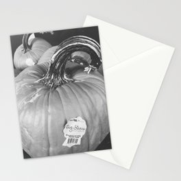 Big Stem Pumpkin Stationery Cards