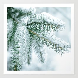 Winter landscapes Art Print