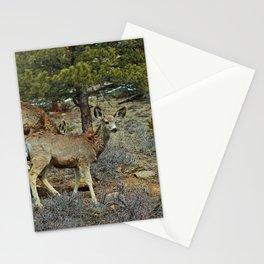 Mule Deer Stationery Cards