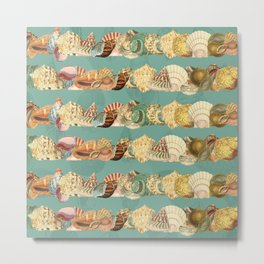 Sea shells pattern 3 Metal Print