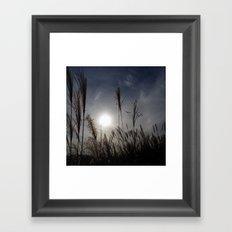 Beautiful Sunset In The Field Framed Art Print