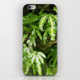 The Fernery iPhone Skin