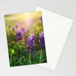 Grape Hyacinths (Muscari) Stationery Cards