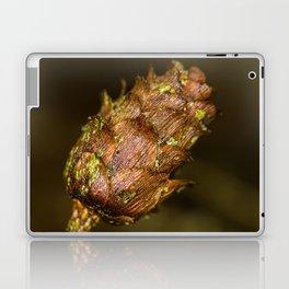 Cones Laptop & iPad Skin
