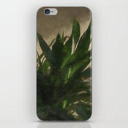 Lucky Bamboo iPhone Skin