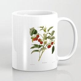 Framboises Coffee Mug