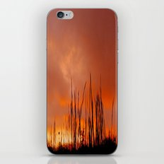 The Storm Is Over iPhone & iPod Skin