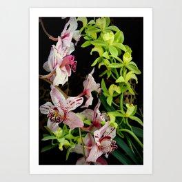 Ring Of Fleur Art Print