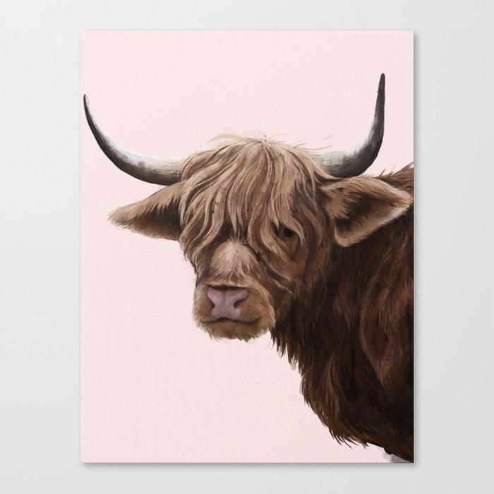 highland cattle portrait Canvas Print