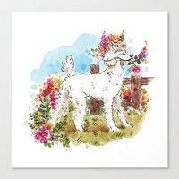 poodle Canvas Prints featuring Poodle by Renee Kurilla