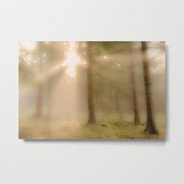 Dreamy wilderness #1 Metal Print