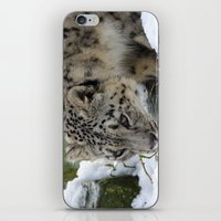 snow leopard iPhone & iPod Skins featuring Snow Leopard by PICSL8