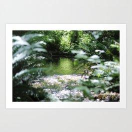 Shimmering Water Art Print