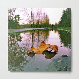 Late Autumn reflection Metal Print