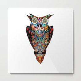 Owl Inspire Metal Print