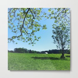 Green Field Metal Print