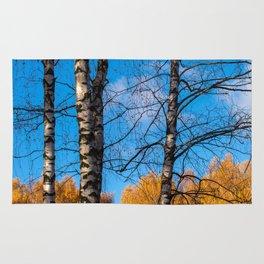 4 birches Rug