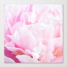 CREAMY PINK FLOWER Canvas Print