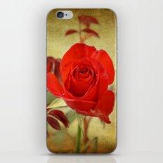 Textured Rose iPhone & iPod Skin
