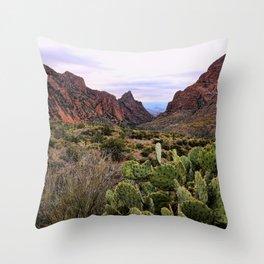 The Window Trail Throw Pillow