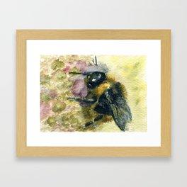 Watercolour Bumble Bee Framed Art Print