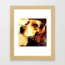 STELLI Framed Art Print