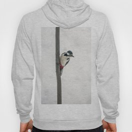 Knock, knock. Who's There? Woodpecker! Hoody