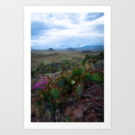 Southwest Cactus with Mountains and Smoke Art Print