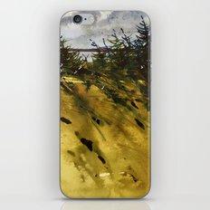Vent de mer iPhone & iPod Skin