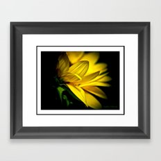 Just a flower Framed Art Print