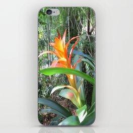 Brilliant Bromeliad iPhone Skin