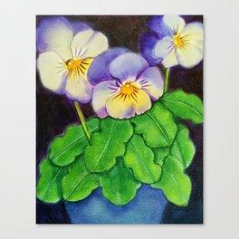 Little Beauties Canvas Print