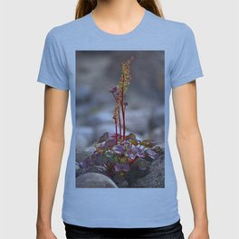 Wildflower between stones scandi landscape T-shirt