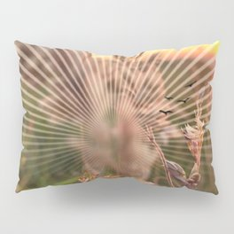 Peel sunset lll - sunset graphic Pillow Sham