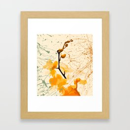 Yellow Orchid Framed Art Print