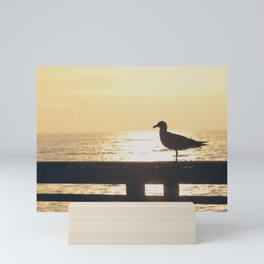 Seagull at Sunset Mini Art Print