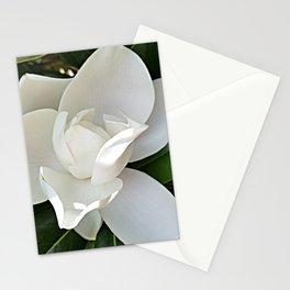 Magnolia 3 Stationery Cards