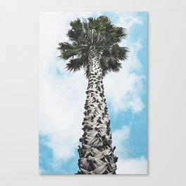 Single lady Canvas Print