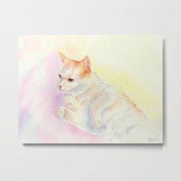 Playful Cat III Metal Print