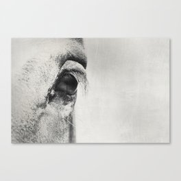 HorSe (V2 grey) Canvas Print