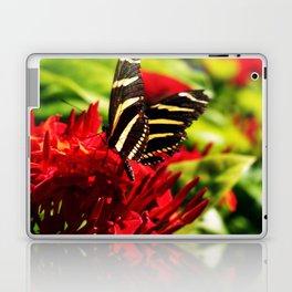 Zebra Longwing Butterfly Laptop & iPad Skin