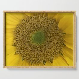Heart of a Sunflower Serving Tray